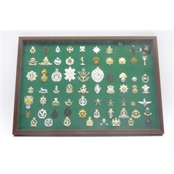 Framed display of sixty-eight army badges, predominantly Staybrite covering most regiments of the British Army 48 x 68cm, mahogany frame
