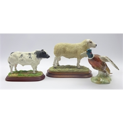 Border Fine Arts 'Texel Ram' by Jack Crewdson, 1999 no. B0530, 'Belgian Blue' Country Artists model and Beswick Pheasant no. 850 (3)