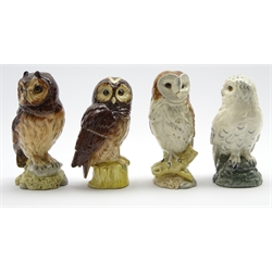 Set of 4 Royal Doulton owl decanters for Whyte and Mackay comprising Tawny, Snowy, Short Eared and Barn, all sealed and with original contents, 3 boxed
