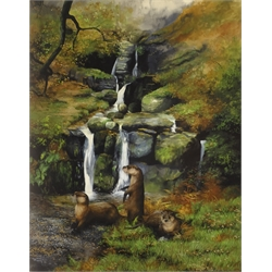 Caroline Manning (British Contemporary): 'An Upland Stream' - Otters Bathing, gouache signed, titled and dated 1982, 67cm x 52cm