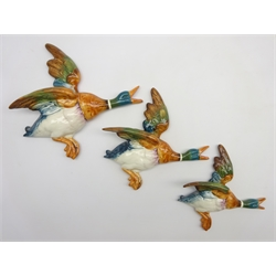 Set of 3 Beswick graduated Mallard wall plaques No. 596/1, 596/2 and 596/3