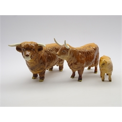 Beswick model of a Highland Bull No. 2008, Highland Cow No. 1740 and a Highland Calf No. 1827D