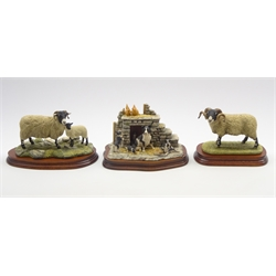 Border Fine Arts limited edition model 'Swaledale Tup'  L148 on wooden base, another 'Swaledale Ewe and Lamb' B0307 and a James Herriot group of sheep dog and pups, all by Ray Ayres
