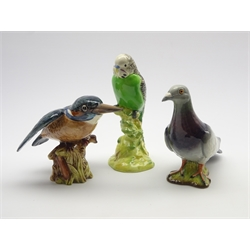 Beswick model of a green budgerigar No. 1217, second version, Beswick pigeon No.1383, second version and a Beswick kingfisher No. 2371