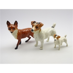 Beswick Jack Russell terrier No. 2023, a small Jack Russell No. 2109 and a Beswick fox No. 1016A