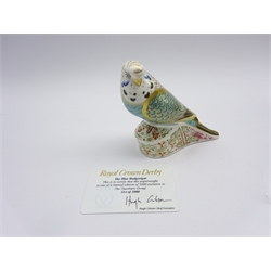 Royal Crown Derby limited edition paperweight 'Sky Blue Budgerigar' No 314/1000, with certificate, gold stopper and boxed