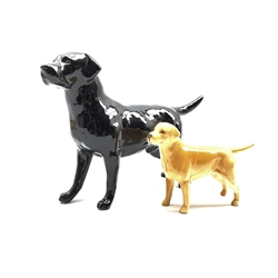 Beswick model of a Golden Labrador No 1956 and another of a Black Labrador No 1548