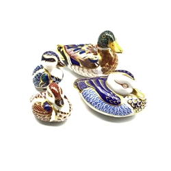 Four Royal Crown Derby duck paperweights, all with silver stoppers