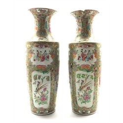 Pair of 19th Century Cantonese shouldered  vases decorated with panels of figures, birds, flowers etc in coloured enamels H64cm