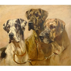 Mabel Gear (British 1898-1987): Trio of Dogs, oil on panel signed 39cm x 45cm 