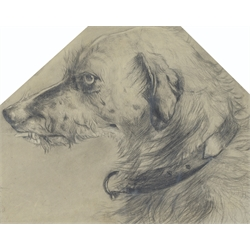 * After Sir Edwin Landseer R.A.(British 1802-1873): Head Study of 'Hafed', Queen Victoria's  favourite Deerhound, black chalk with inscription and date 'E Landseer 1847?', inscribed on the mount with upper corners cut 37cm x 46cm  Provenance: from the private family collection at Harewood House - <a href='https://www.dugglebystephenson.com/auctions/harewood-house.aspx'>Read more...</a>