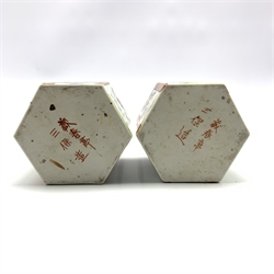 Pair of Chinese hexagonal tea canisters decorated with panels of landscapes and birds, H11cm